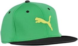 PUMA Erwachsene Cap Basic Strechfit, Island Green, Adult, 828267 03 -