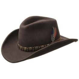 Stetson Hackberry Traveller Cowboyhut Wollhut (L/58-59 - braun) -